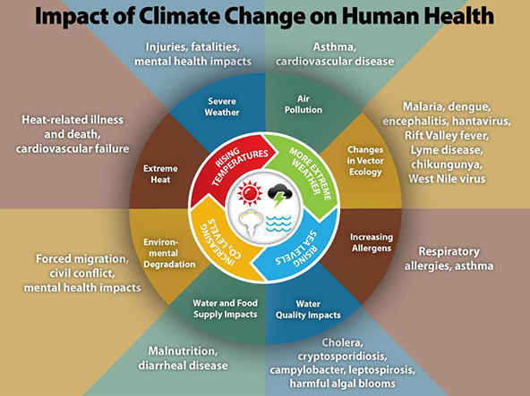 Source: Centre for Disease Control and Prevention, USA. https://www.cdc.gov/climateandhealth/effects/default.htm